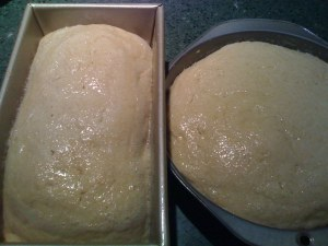 ...and after.  The dough is level with the top of the pan.